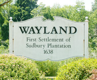 Wayland water filtration