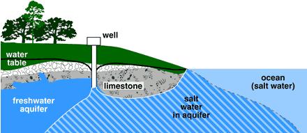 How salt water intrusion happens