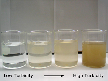 What is water turbidity